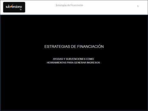 Ayudas públicas e institucionales en la internacionalización de empresas.