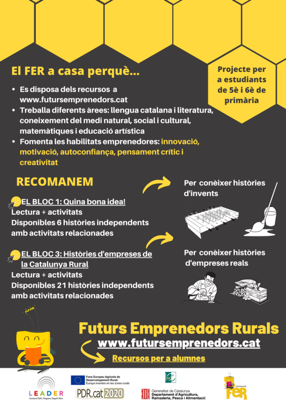 Proyecto FER