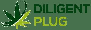 DILIGENT PLUG